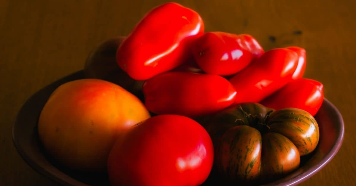 fresh roma tomatoes are best