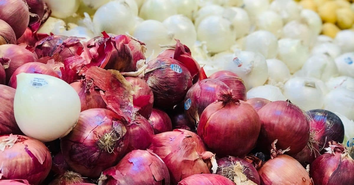 White onions are used in guacamole recipes.