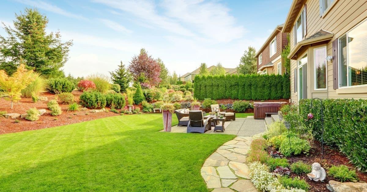 diy backyard landscape